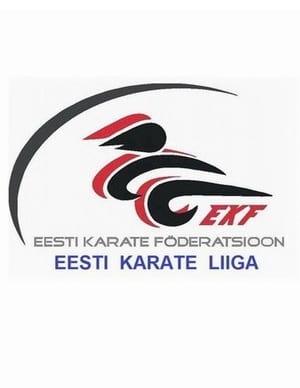 2 этап EKL-Falco Cup 27.11.16