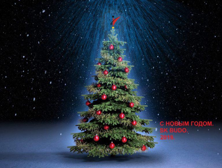 С Рождеством и Новым Годом. 24.12.-1.01.19. Тренировок в СК БУДО не будет.